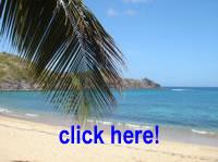 Bilder von Martinique